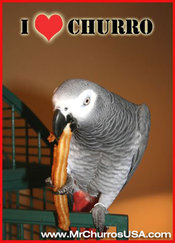bird eating a churro